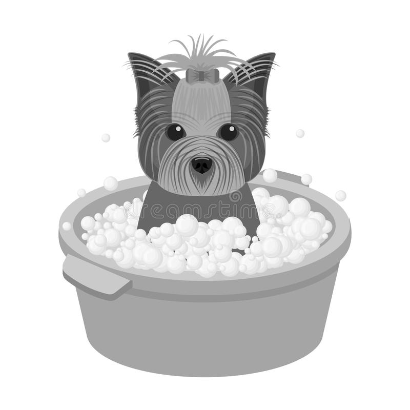 Bathing pet puppy in a bowl. dog,Pet,dog care single icon in monochromt style vector symbol stock illustration web. Bathing pet puppy in a bowl. dog,Pet,dog vector illustration