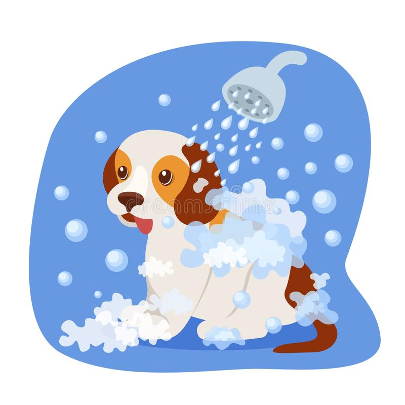 Bathing puppy in shower, with soapy water, health care, appearance. vector illustration