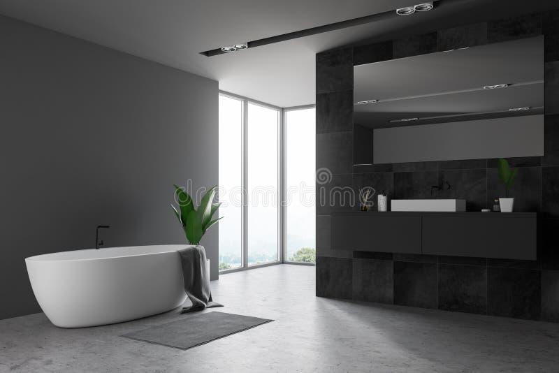 Bathroom, ушат и раковина черноты просторной квартиры иллюстрация вектора
