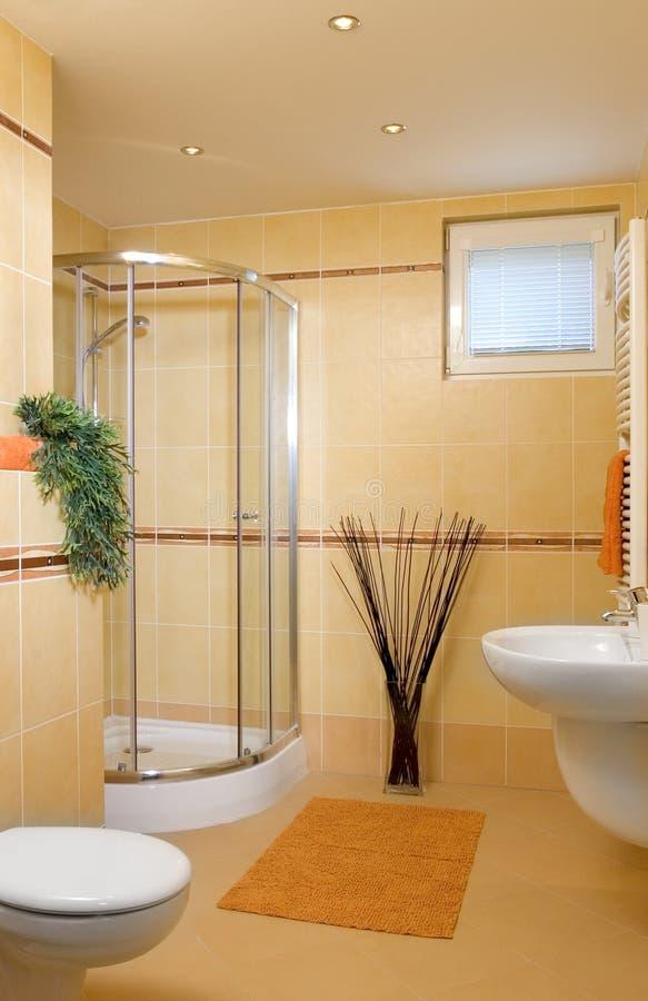 Free Bathroom Royalty Free Stock Photos - 11749548