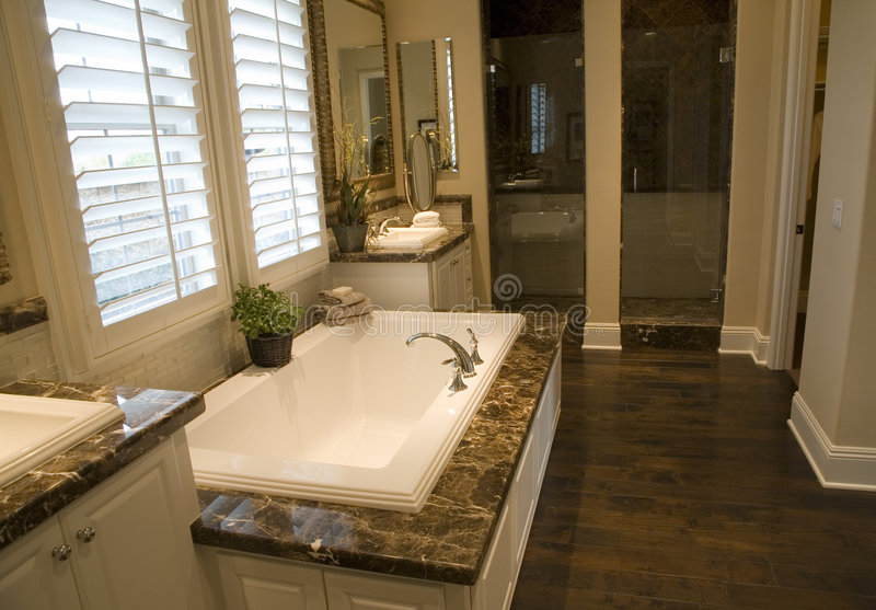 Download Bathroom 2710 stock photo. Image of decor, estate, indoors - 3979388