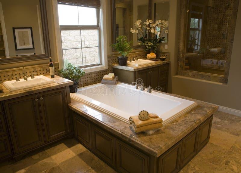 Download Bathroom 2743 stock photo. Image of showcase, decorating - 3979404