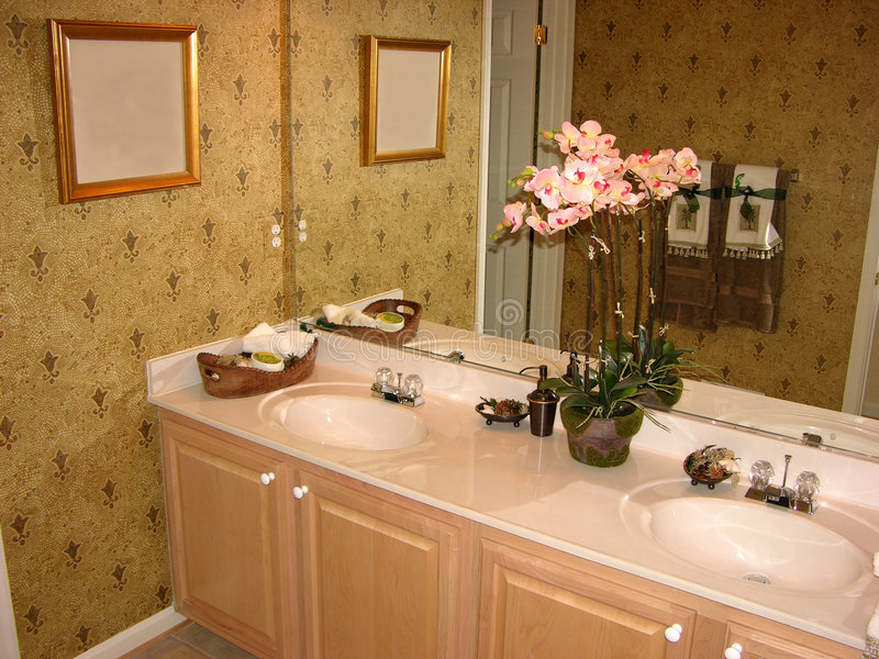 Bathroom. Formal bathroom or powder room stock image