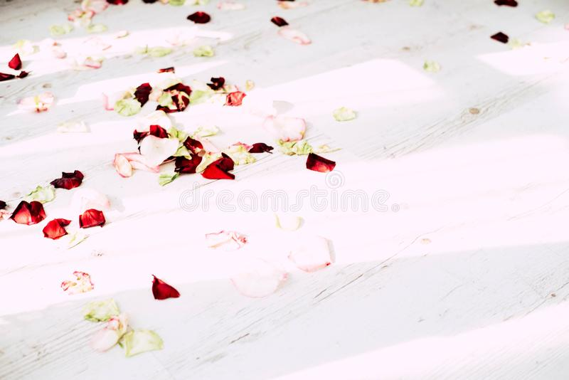 The bathroom is in a light room decorated with flowers and petals of roses stock image