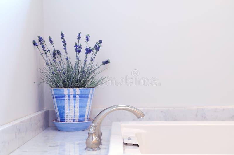 Download Bathroom Elegance stock photo. Image of flowers, white - 11590670