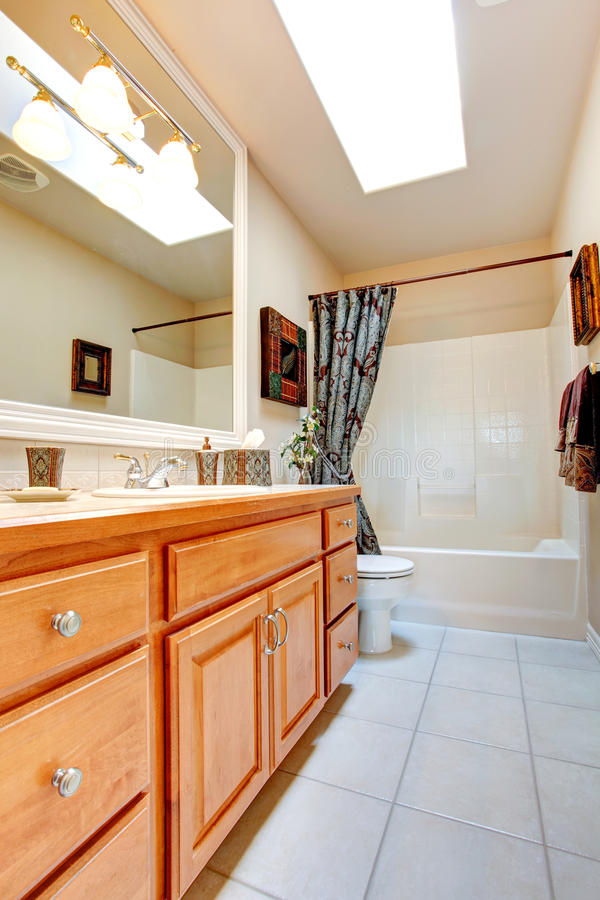Download Bathroom Interior In New American House Stock Photo