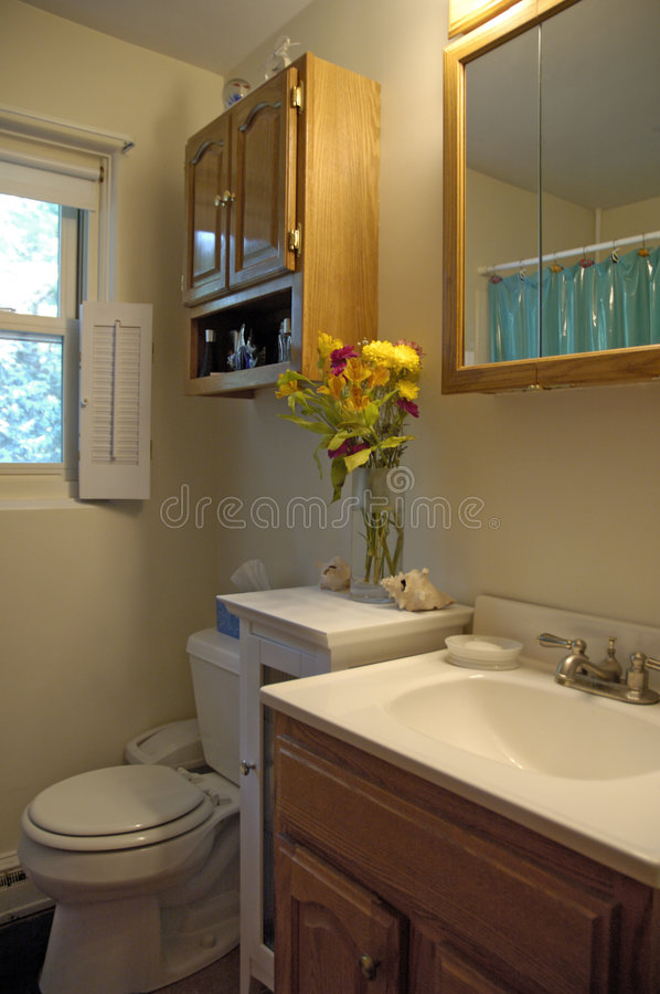 Download Bathroom interior shot stock image. Image of mirror, wood - 14909