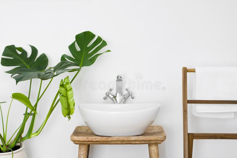 Bathroom interior with white sink, towel hanger and green plant.  stock photography