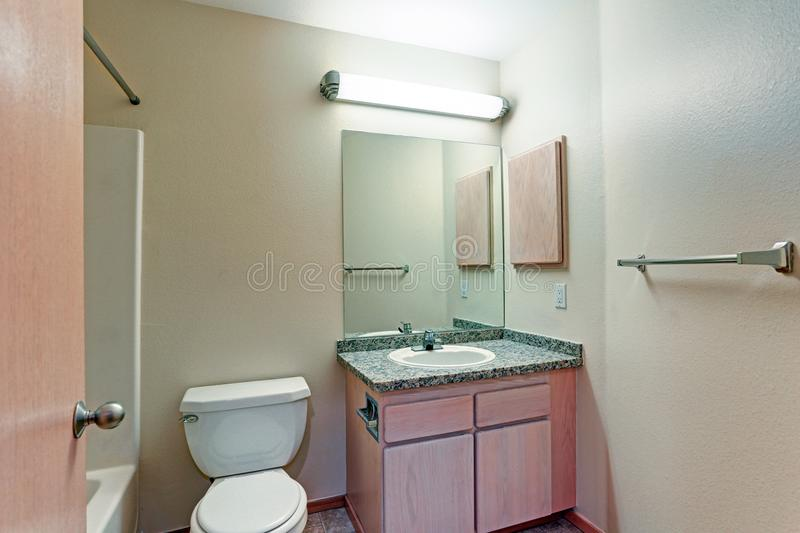 Bathroom With Light Wood Vanity Cabinet Stock Image - Image of glass ...