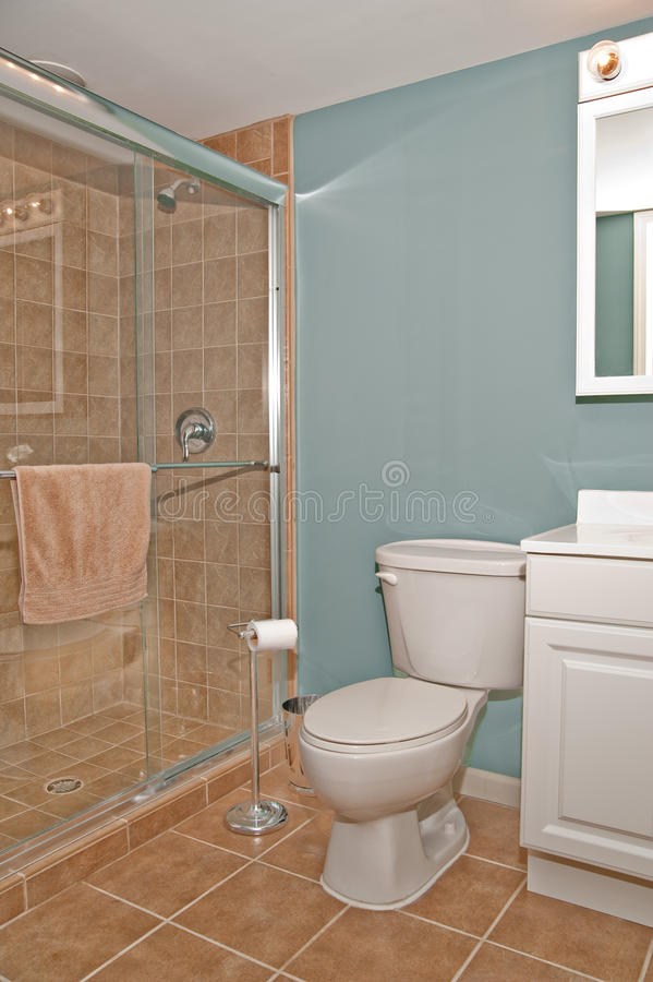 Bathroom Toilet and Shower Stall royalty free stock images