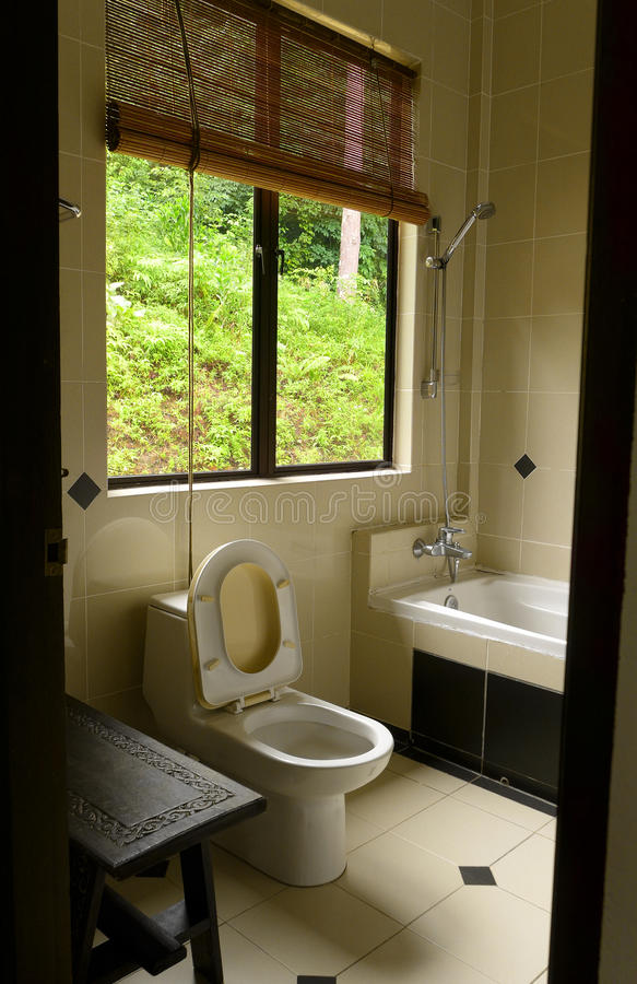 Download Bathroom With Tropical Jungle View Stock Photo - Image: 28766122