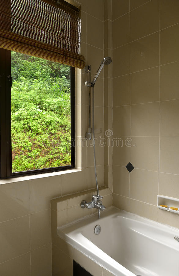 Bathroom With Tropical Jungle View Stock Image