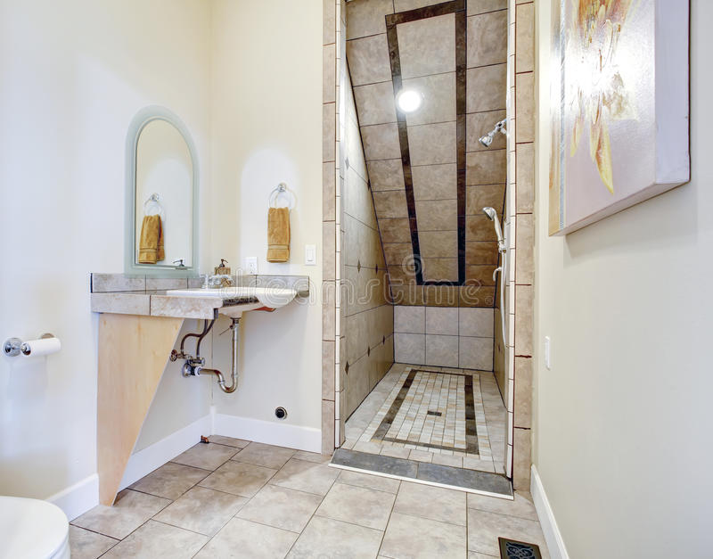 Bathroom with vaulted ceiling shower area stock photo for Bathrooms for small areas