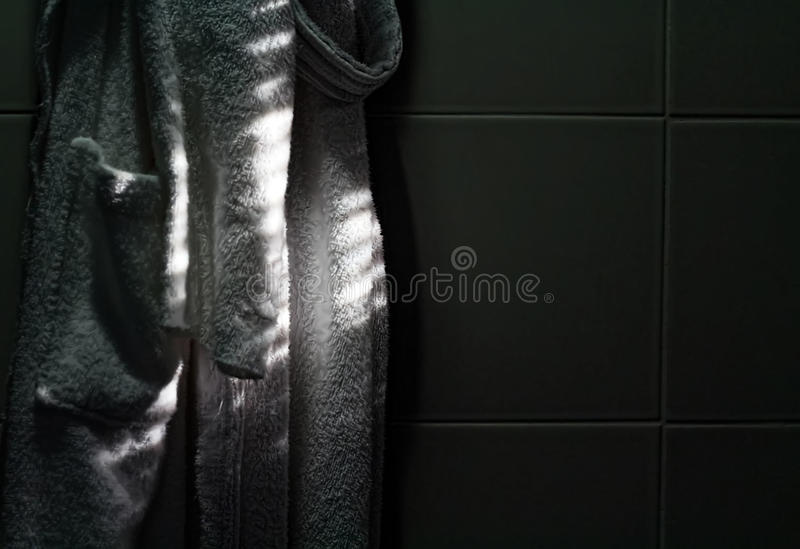 bathroomed 免版税库存照片