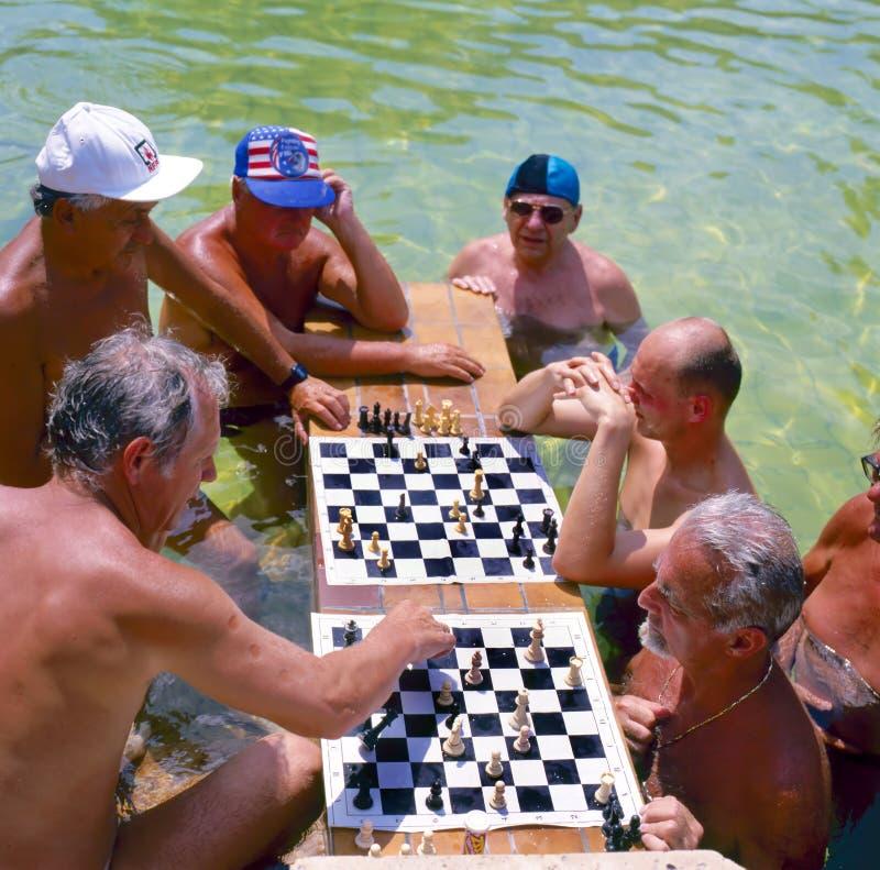 baths pool spa szechenyi κολύμβησης θερμικό στοκ εικόνα με δικαίωμα ελεύθερης χρήσης