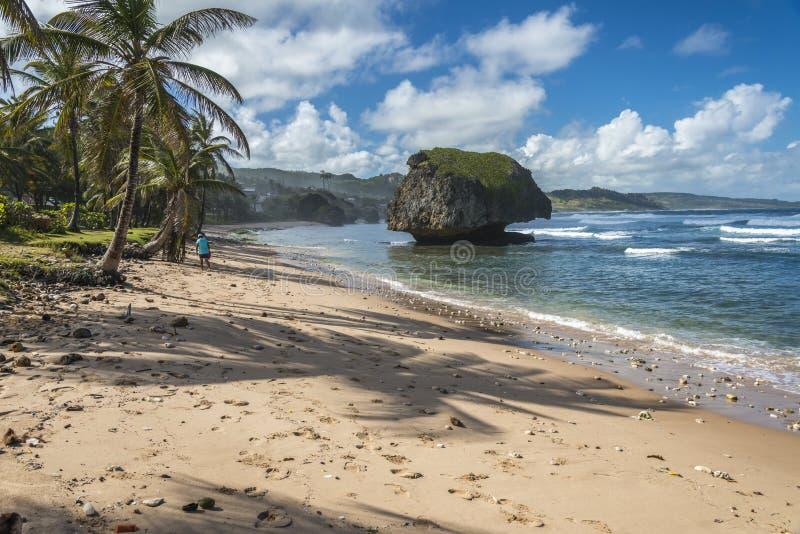 Bathsheba Barbados West Indies foto de stock royalty free