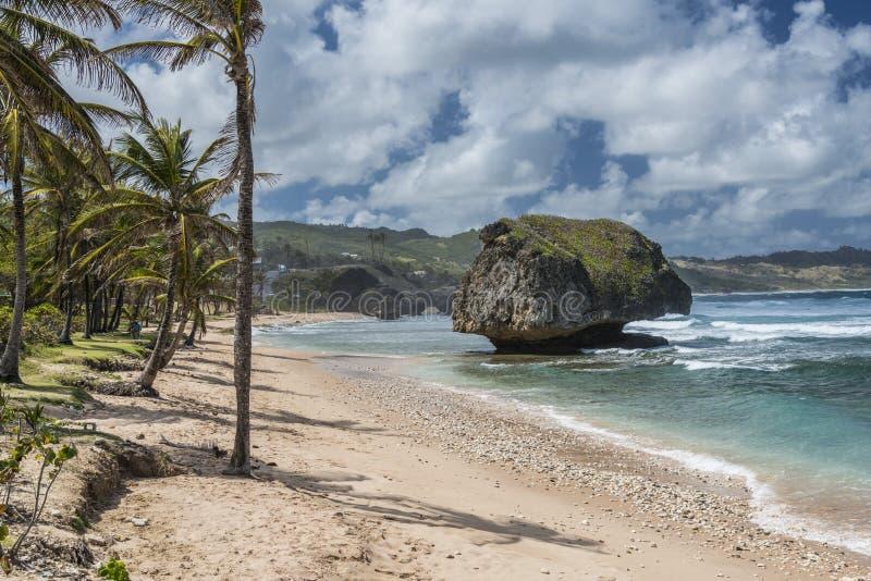 Bathsheba Barbados West Indies image stock