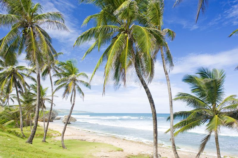 Bathsheba, Eastern coast of Barbados, Caribbean. Outdoor, outdoors, outside, exterior, exteriors, america, central, greater, antilles, lesser, west, indies royalty free stock photography