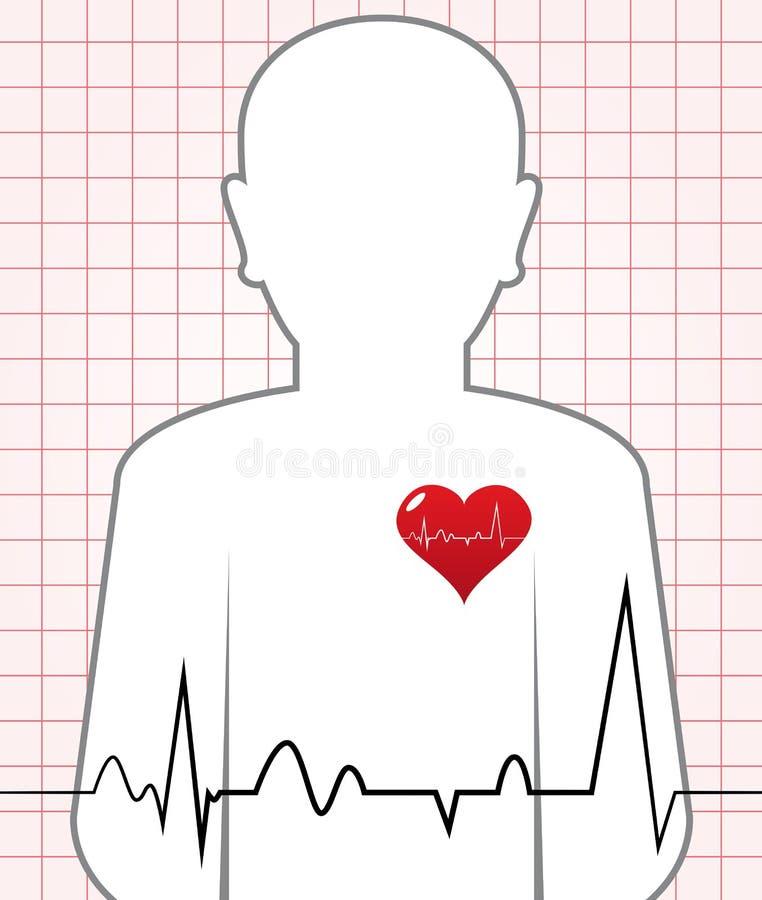 Batida de coração humana do vetor ilustração stock