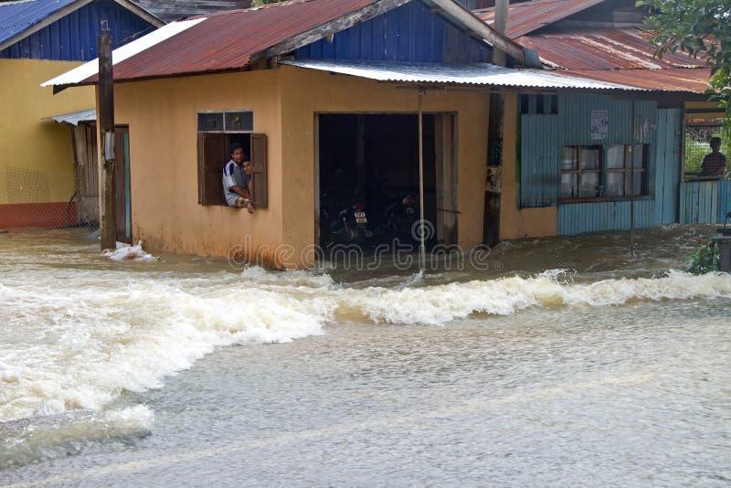 Batidas pela inundação fotografia de stock