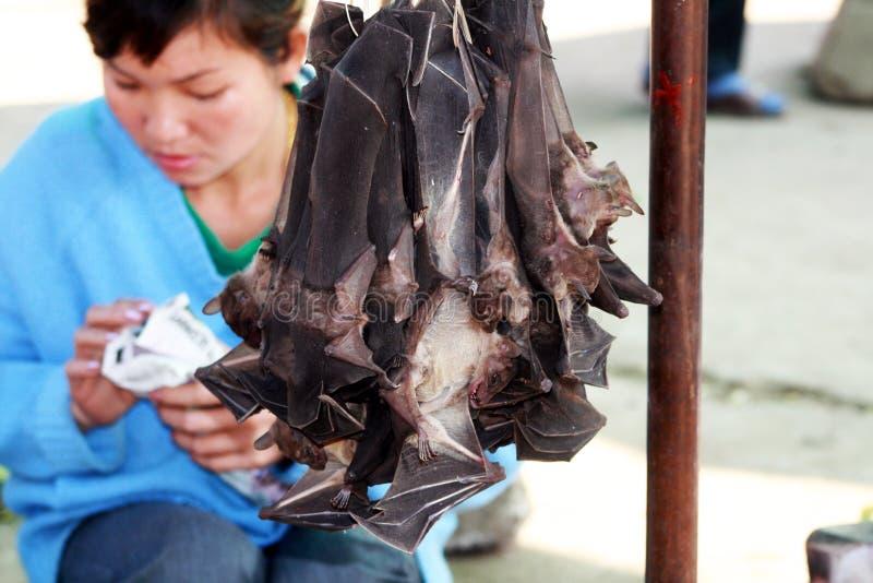 Bats food. Bats on a food stallin the market of luang prabang in laos royalty free stock image
