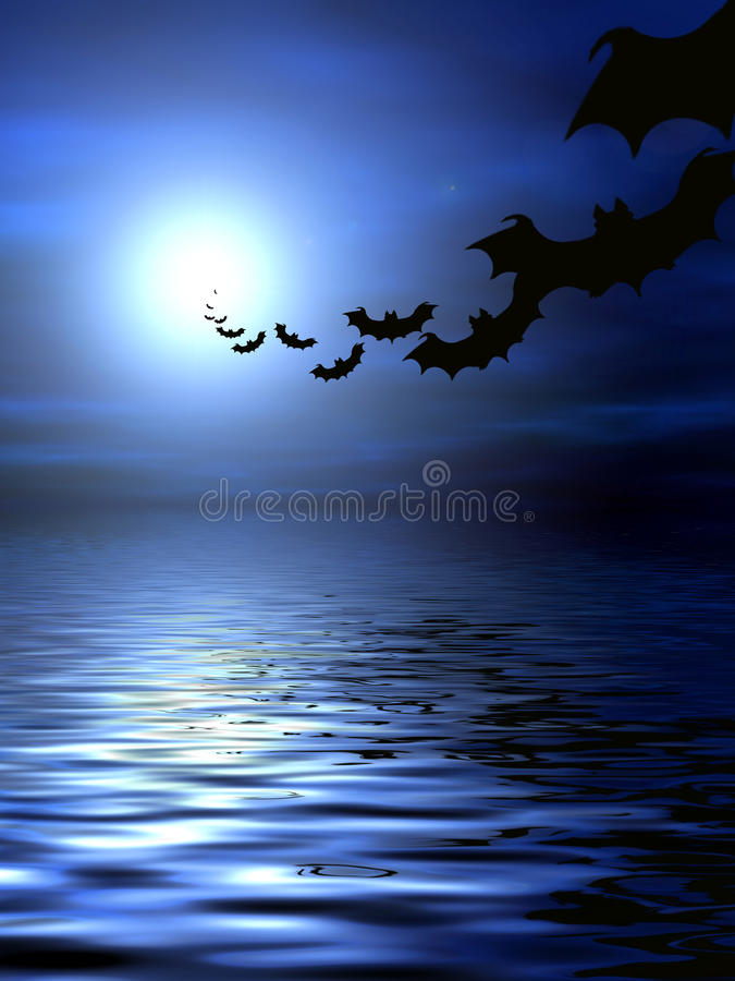 Bats over the water royalty free stock photo