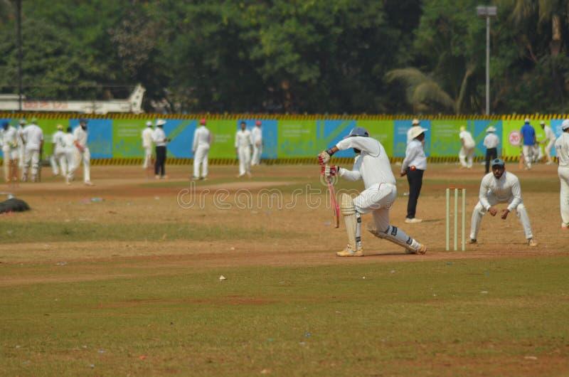 Batsman stock photography