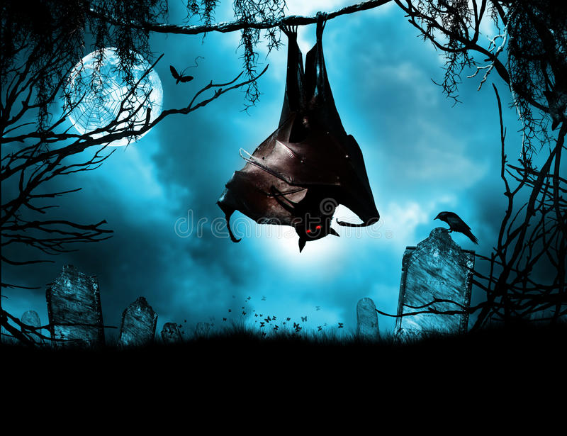 Batte de vampire accrochant au-dessus de la tombe image stock
