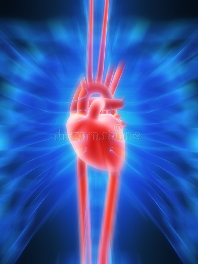 Battement de coeur humain illustration libre de droits