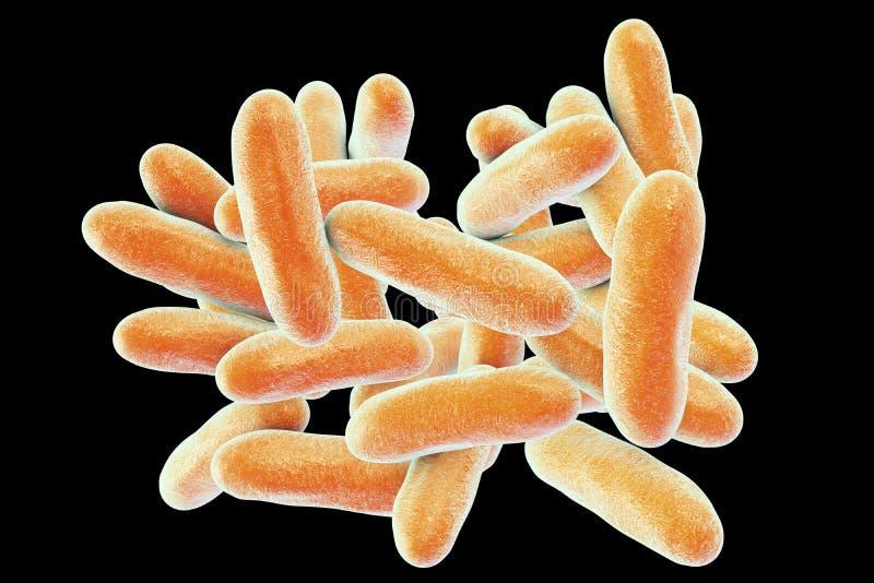 Batteri di legionella pneumophila illustrazione vettoriale
