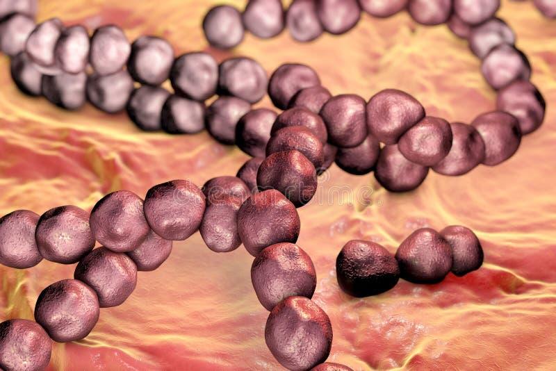 Batteri di Streptococcus mutans illustrazione di stock
