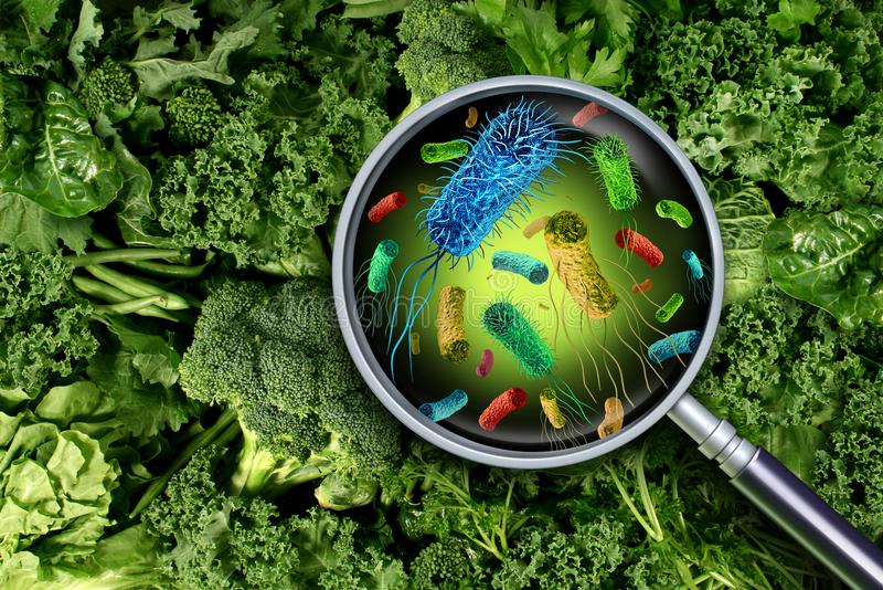 Batteri e germi sulle verdure illustrazione vettoriale