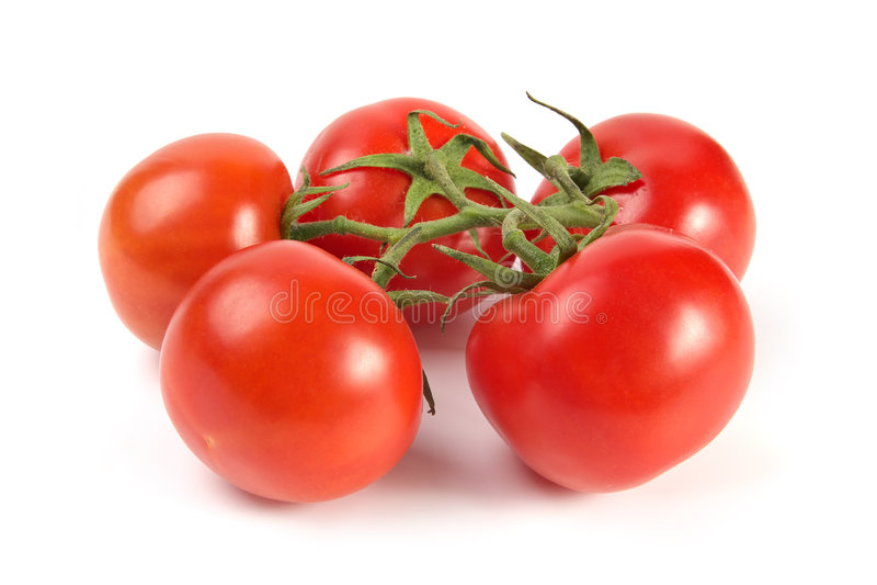 Batterie de tomates images libres de droits
