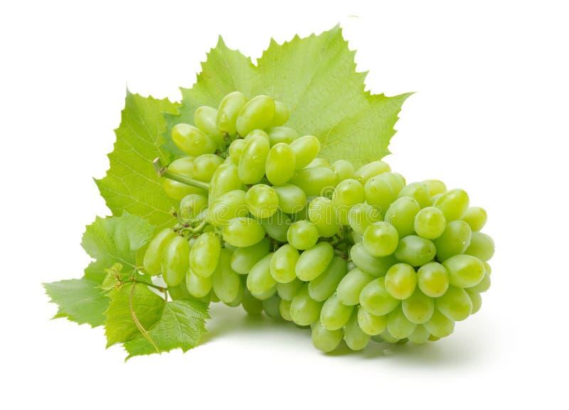 Batterie des raisins mûrs et verts image stock