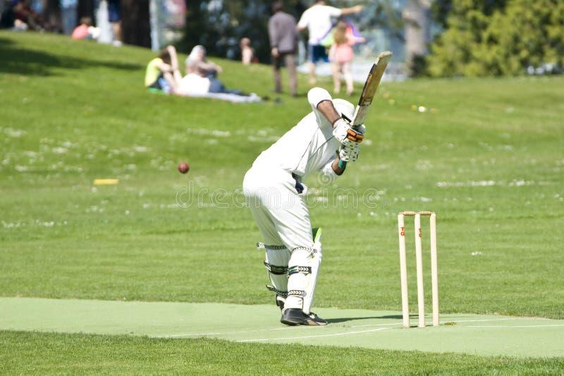 Batteur de joueur de cricket photos libres de droits