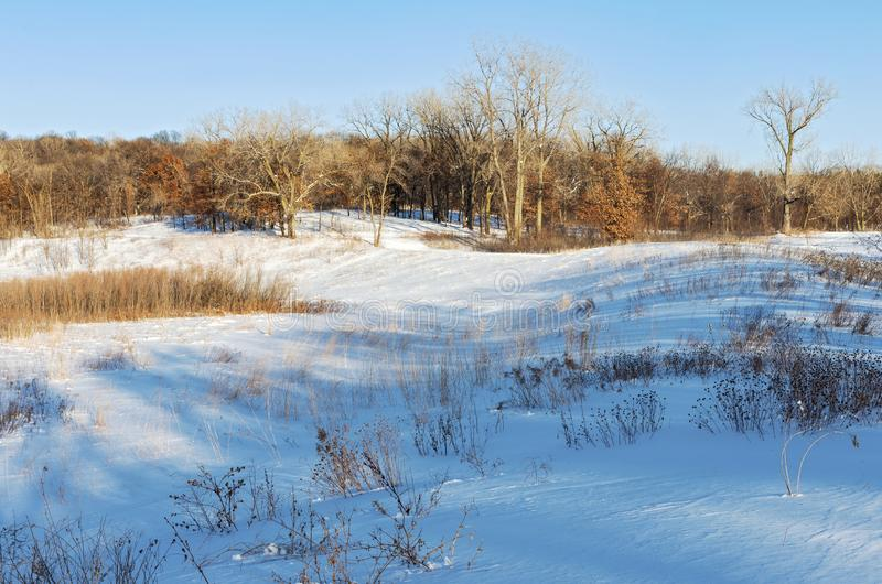 Battle Creek Snow Covered Prairie and Forest Landscape. Prairie hills against forest in snow covered battle creek park of saint paul minnesota royalty free stock photography