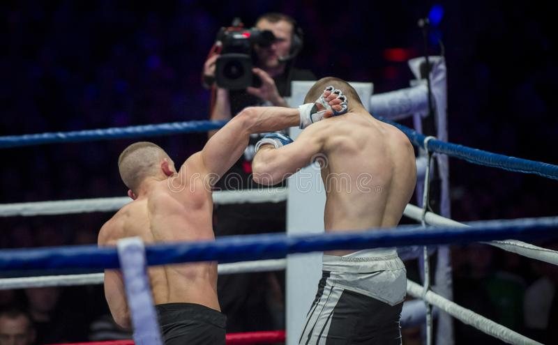 Battle MMA fighters kick hand to head stock image