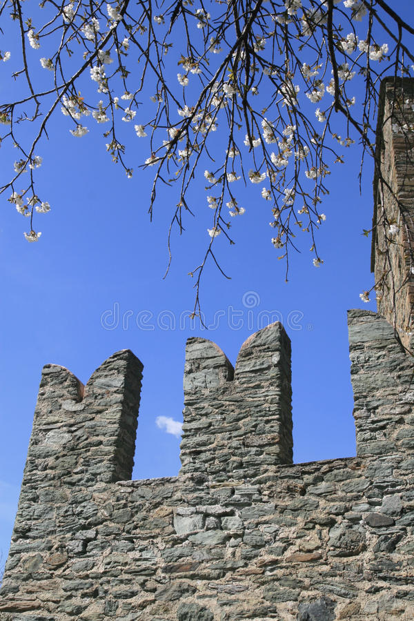 Free Battlements In Fenis Castle Royalty Free Stock Photography - 49615927
