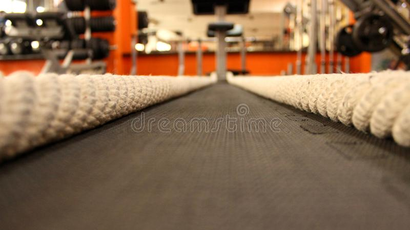 Battling ropes at gym. stock photography