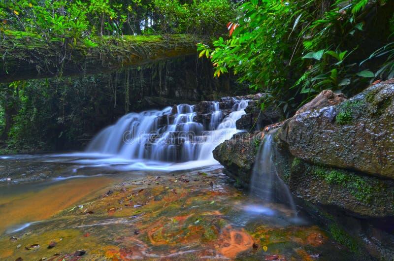 Batu Hampar vattenfall i Pahang, Malaysia fotografering för bildbyråer