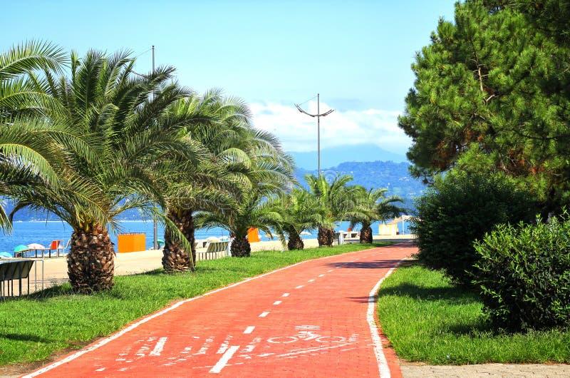 Batumi Boulevard. With amazing palms and sea side royalty free stock photo