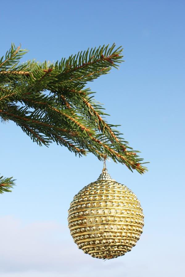 bauble bożych narodzeń zielony drzewo obraz stock
