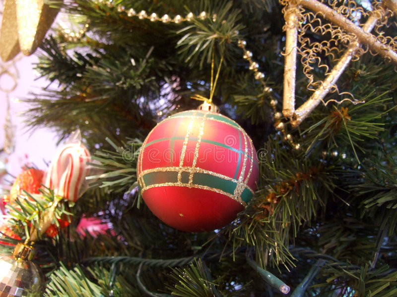 Download Bauble on Christmas tree stock photo. Image of festive - 1689386