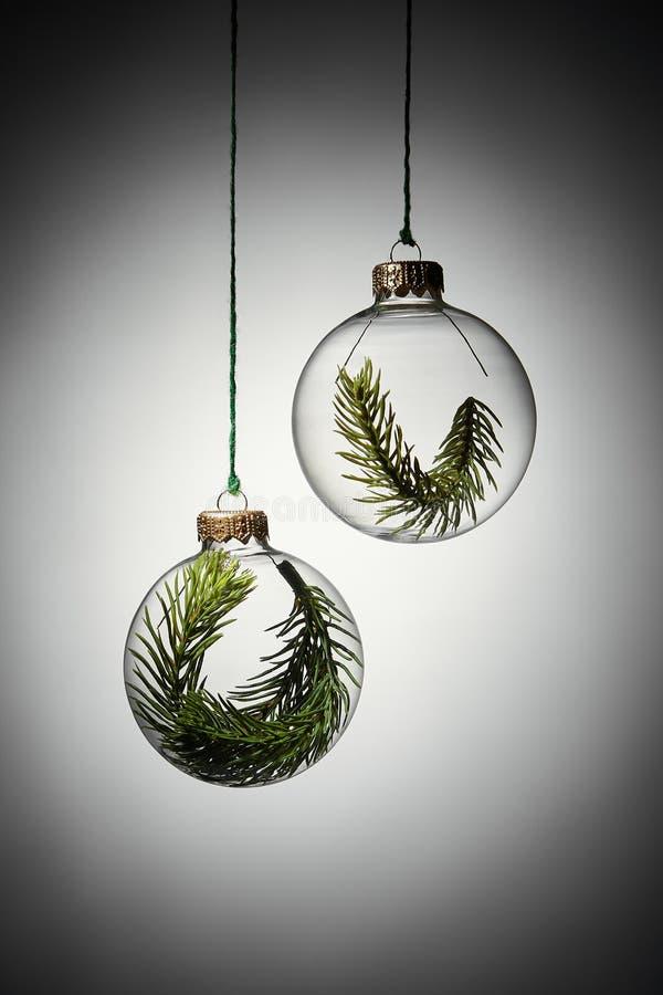 Bauble de natal transparente com ramal de árvore verde-everdeada dentro imagem de stock royalty free