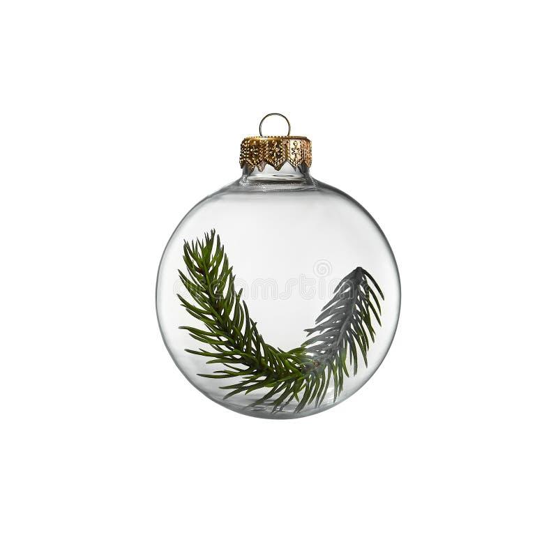 Bauble de natal transparente com ramal de árvore verde-everdeada dentro imagens de stock