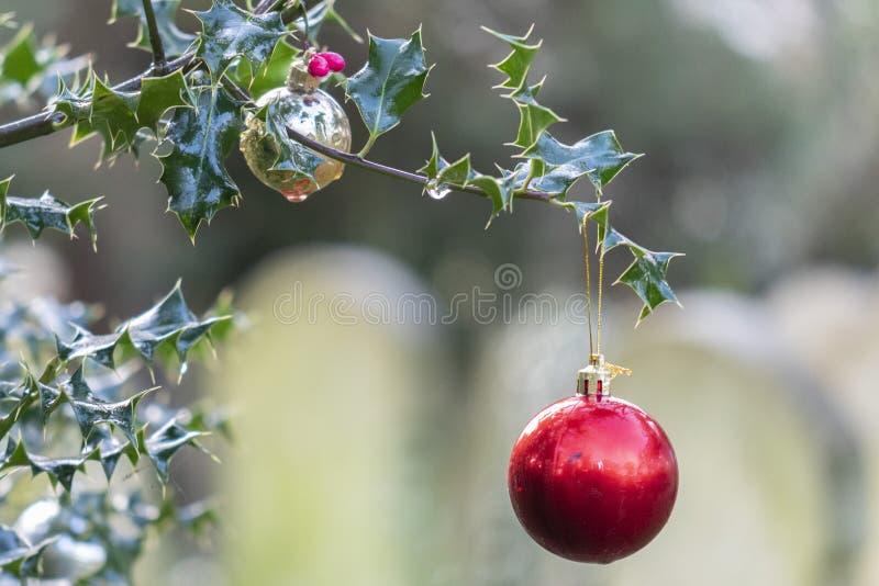 Baudias de Navidad en el viejo cementerio del sur de ampton foto de archivo libre de regalías
