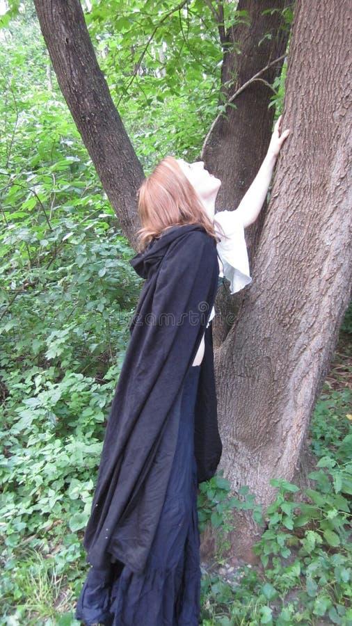 Bauer, der oben einen Baum schaut stockfoto