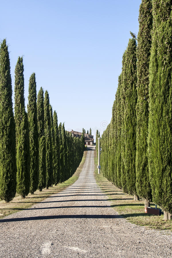 Bauernhaus in der Toskana-Landschaft lizenzfreie stockbilder