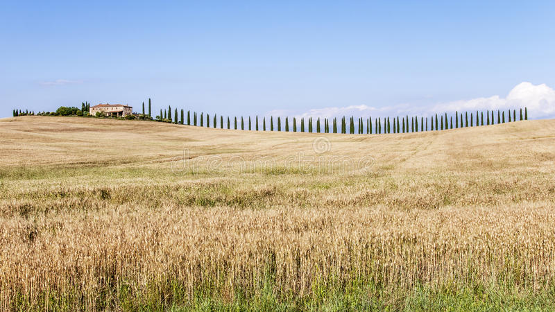 Bauernhaus in der Toskana-Landschaft lizenzfreies stockbild
