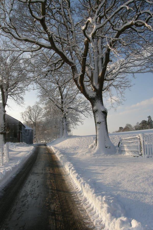 Bauernhof-Antrieb lizenzfreie stockfotos